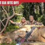 Finding ELK HUNTING Units (Over the Counter – Public Land Bulls)
