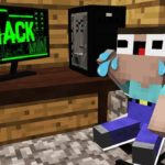WHO HACKED THE COMPUTER OF THE NOOB? In MINECRAFT : NOOB vs PRO vs HACKER