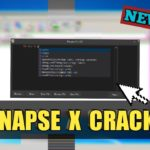Synapse X Cracked Key Synapse X Serial Key 2020