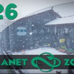 Chalet Enneigé – 26 Planet Zoo