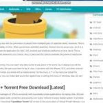 TunnelBear Crack 3 9 7 Serial key + Keygen Download 2020 Latest