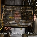 Backyard Beekeeping Questions and Answers 70, Vivaldi boards, brood in Flow Super and more
