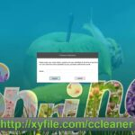 CCleaner Professional Plus License Key + Full Crack Latest Update