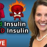 How to Tame Your Insulin: Endocrine System Explained