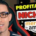 How I Find Insanely Profitable Niches For Merch By Amazon With Merch Ninja in 2020