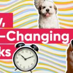 9 Mini-Tasks That Can Actually Change Your Life
