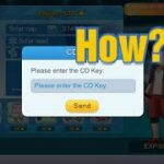 What is CD Key Code in Momter Honor Fight -11