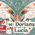 Livestream: Drawing Bugs in Procreate Using the Symmetry Tool with Doriana Lucia