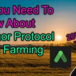 All You Need To Know About Anchor Protocol DeFi Tips Guide 💰20 APY Serious?